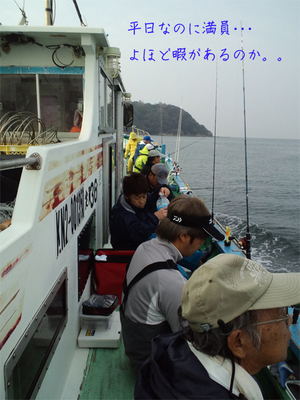 藤沢市片瀬港より出船!