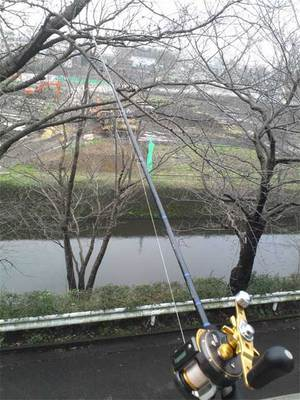 hujisawashi-sizensozainoie-i-shuzai3.jpg