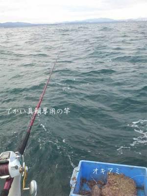 大分関サバ、関アジを釣る!PART-2