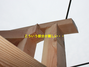 hayama-nagae-shinchikuikkodate-chuumonjyuutaku-jyoutou-s3.jpg