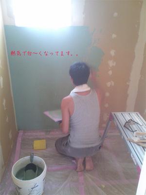 kamakura-sizensozai-keisoudo-nuri4.jpg