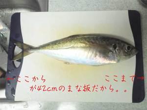 yokosukashi-sanomachi-h-chuumonhyuutaku-shuzai3.jpg