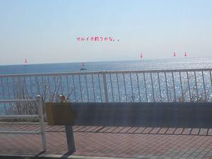 hayama-isshiki-chuumon-jyuutaku-shuzai-k3.jpg