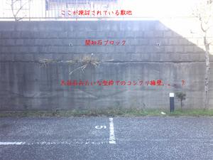 huzisawashi-tochi-sagashi-osusumeshinai2.jpg