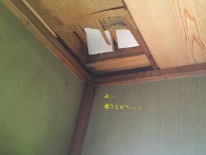 yokosukashi-hutaba-amamori-kaishuu2.jpg