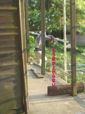 hayama-shimoyamaguchi-s-umimie-keikan-check2.jpg