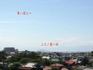 hayamamachi-horiuchi-keikan-kakunin-kuruma6.jpg