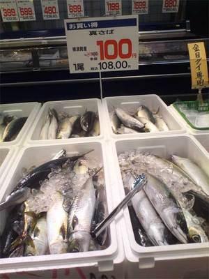 横須賀市大型スーパースーパーマーケットave(エイヴイ)
