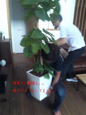 yokosukashi-nagasawa-live-in-luxury-shuzai4.jpg