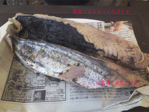 hayama-taizoumaru-gekichinmaru3.jpg
