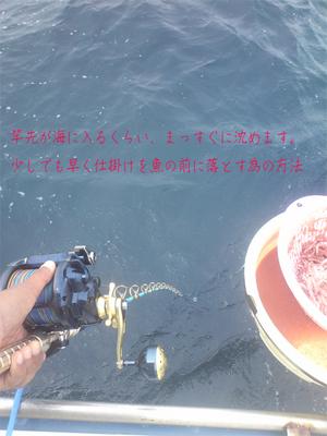 hayama-abuzurikou-maguro-shugyou2.jpg