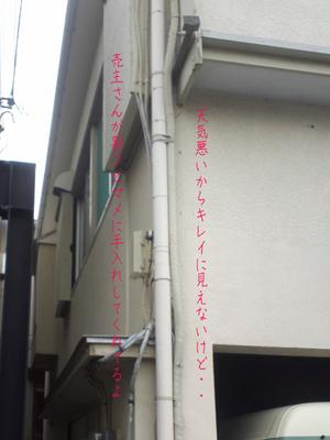 tsujidou-reform-shisatsu4.jpg