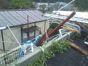 台風対策要検討・・・