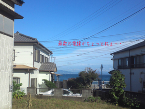 miurashi-minamishitaura-kaneda-shisatsu2.jpg