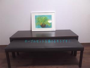 denentoshi-seikatsu-yokohama-kounandai-n-shuzai5.jpg