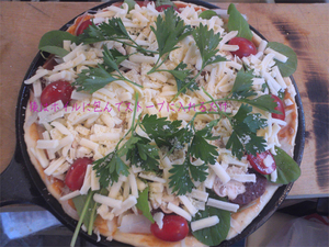 maki-stove-pizza3.jpg