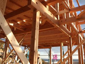 横須賀市野比『女性建築家の建てる家』上棟☆