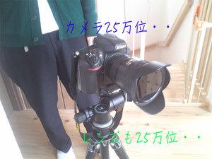 hayama-isshiki-o-shuzai2.jpg