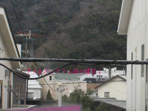 hayamamachi-horiuchi-m-n-shisatsu6.jpg