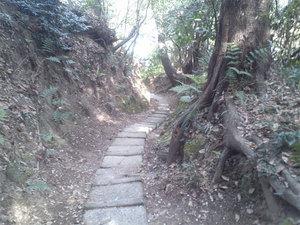 hazakura-zushi-yamamichi10.jpg