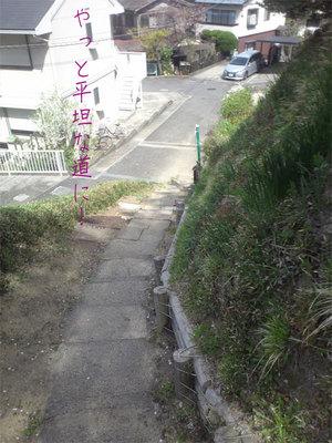 hazakura-zushi-yamamichi11.jpg