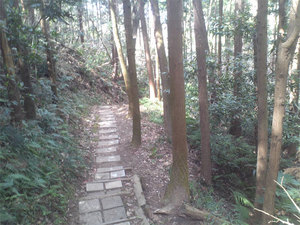 hazakura-zushi-yamamichi9.jpg