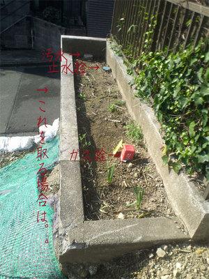 kamakura-zushi-hayama-yokohama-tochisagashi5.jpg