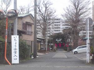 miurashi-minamishitaura-h-jichinsai3.jpg