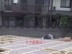 miurashi-minamishitaura-kiso-dodai2.jpg