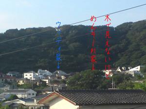 hayama-isshi-n-tochisagashi-umimie5.jpg