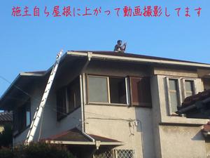 hayama-isshi-n-tochisagashi-umimie6.jpg