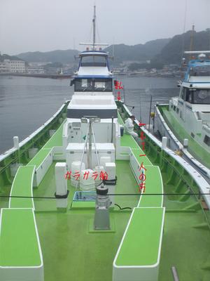 横須賀市走水|港一番の関義丸アジ釣行