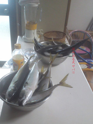 yokosukashi-hashirimizu-sekiyoshimaru-tsuyudoki-choukou4.jpg