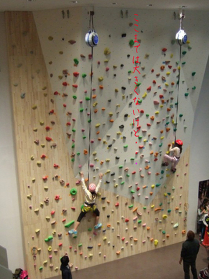 yokosukashi-renovation-climbingwall2.jpg