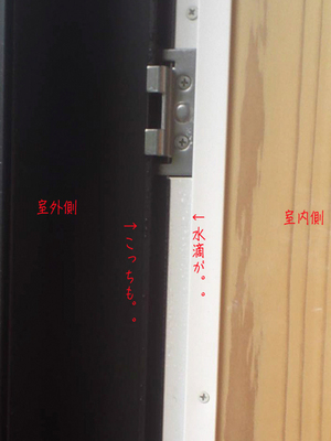 hayama-nagae-t-amamori-2.jpg