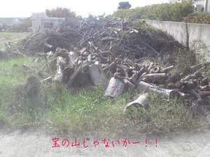miurashi-misakimachi-koajiro-k-jichinsai3.jpg