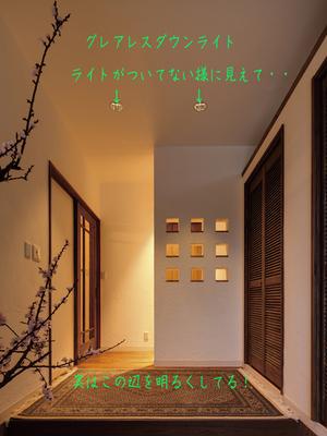 hayamamachi-horiuchi-s-shoumei-keikaku2.jpg