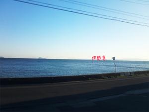 出張二日目愛知県知立市|太陽熱床暖房の老舗チリウヒーター実験ハウス視察
