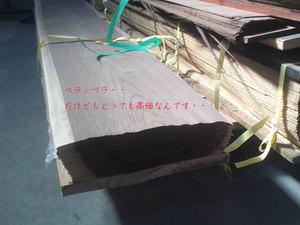 shizuoka-yaizu-linea-talara6.jpg