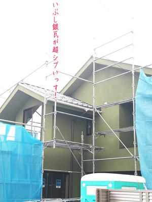 miurashi-koajiro-nekonoma-kengaku-mensetsu5.jpg