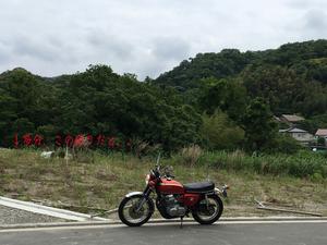 葉山町下山口に購入した敷地内|斜面の有効活用法!