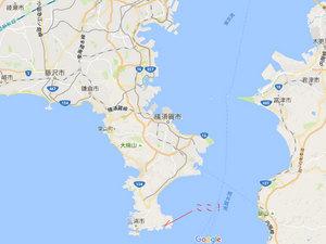 東京湾産松輪サバの食べれる食堂|みうら漁協地魚料理 松輪さん⭐︎