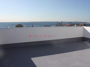 yokosukashi-nobi-y-inu-hashiru-ohikiwatashi3.jpg