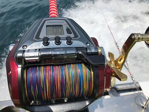 yokohama-kounanku-kounandai-southern-fishing10.jpg