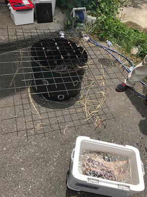 葉山のカツオを美味しく食べる|工務店らしい藁焼き設備