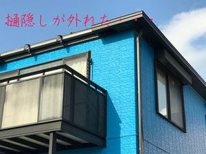 三浦半島の中古戸建|メンテナンスはどこまでやる?