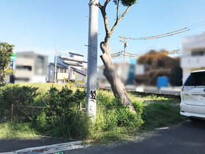 nakao-ac-modelhouse-kusakari3.jpg