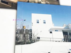 shizensozai-demerit-oshiete4.jpg