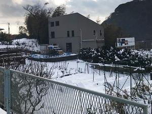 積雪に弱い三浦半島|降雪の後はどうする?