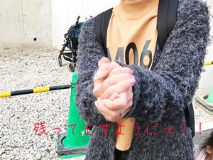 hayamamachi-nagae-tochi-ichibante3.jpg